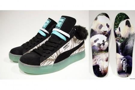 puma panda!