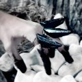Onix Claws