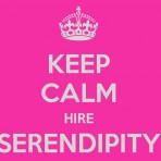 serendipity stuff store