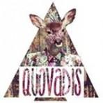 """Tienda online """"Quo Vadis"""""""