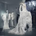 """La exhibición """"Birds of Paradise"""" en Bélgica: Un tributo a la elegancia de las plumas en el mundo de la moda"""