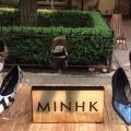 Minhk6