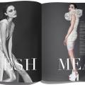 Flesh Magazine2