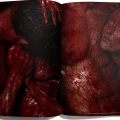 Flesh_Editorial Carlos Medel (PH)