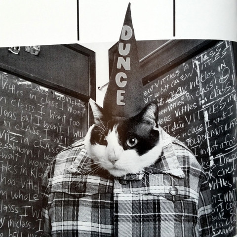 Cat_High_Yearbook_THUMB3_large