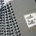 ¡Consigue tu Agenda VisteLaCalle 2016 con 40% de descuento antes de que se acaben!