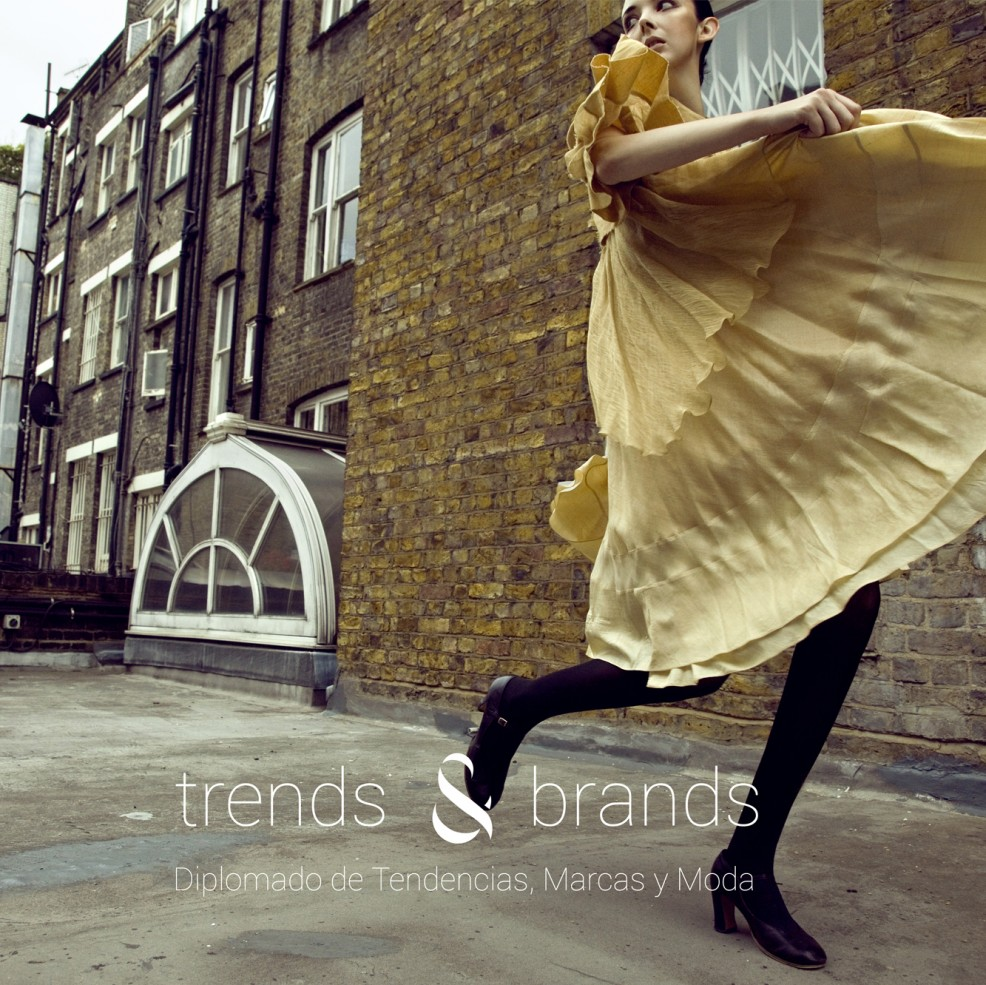 Trends and Brands_UDD