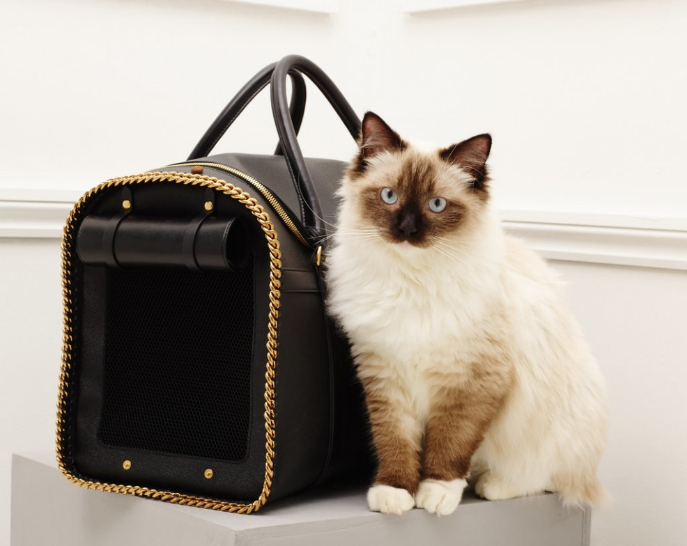 Stella-McCartney-Fall-2016-Accessories-cats-16