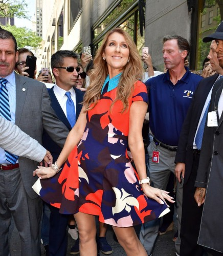 gallery-1469307804-celine-dion-look-7a-gettyimages-578333728