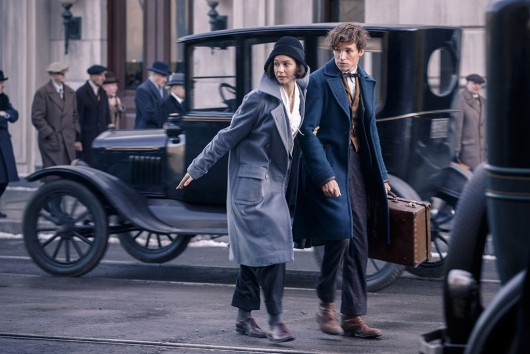 rs_1024x683-160206075025-1024-fantastic-beasts-and-where-to-find-them-newt-scamander-eddie-redmayne-movie-still-2616-1