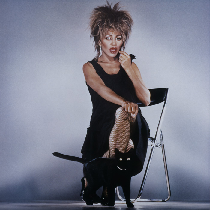 "tina turner - ""private dancer"" record sleeve"