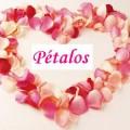 petalos.jpg (16 KB)