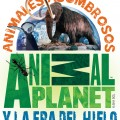 Logo animal.jpg (561 KB)