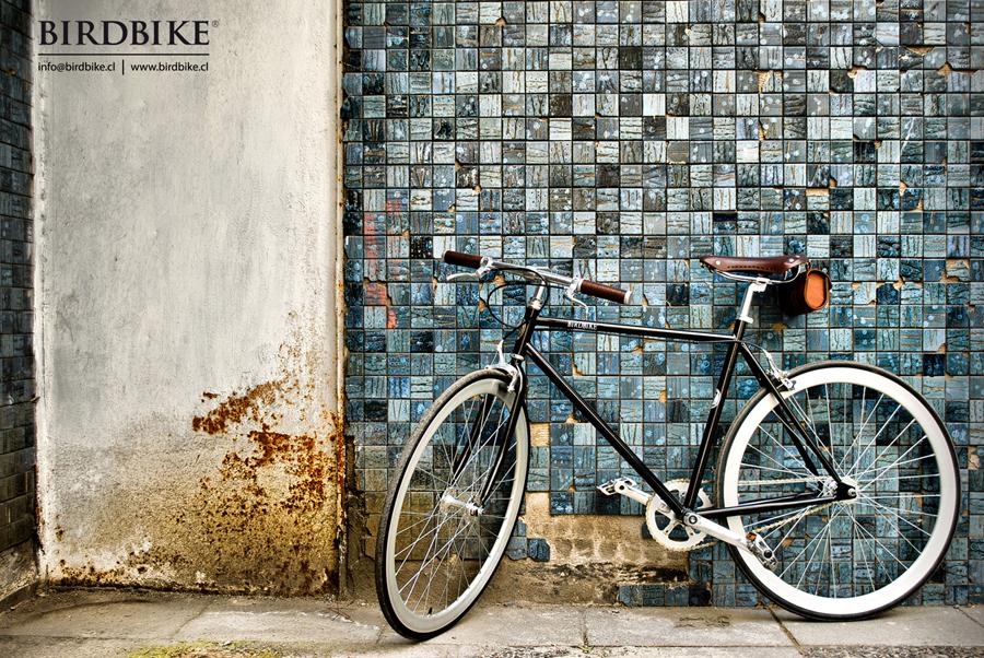 birdbike cycle